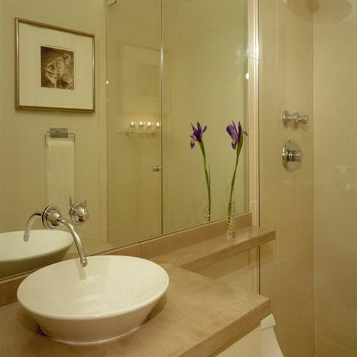 Small bathrooms remodels ideas on a budget for Easy bathroom remodel